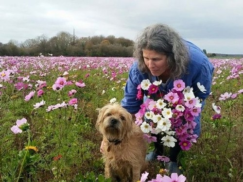 Eleanor Garvin stands in a field of purple and pink flowers, petting one of her pet dogs